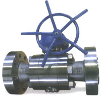 Trunnion Mounted Ball Valve ANSI 2500